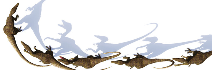 Velociraptor group, dinosaurs from the Cretaceous period, isolated on white background