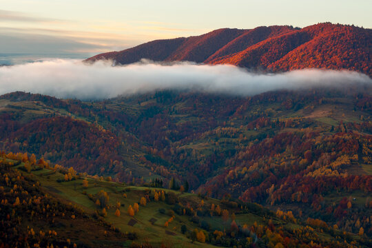 transcarpathian rural landscape at sunrise. countryside scenery of carpathian mountains in autumn. trees and fields on rolling hills. clouds and mist glowing in the morning light