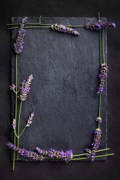 Top view of a black slate board with bunch of lavender flowers around as a frame on a dark background. Romantic theme with copyspace for your text.