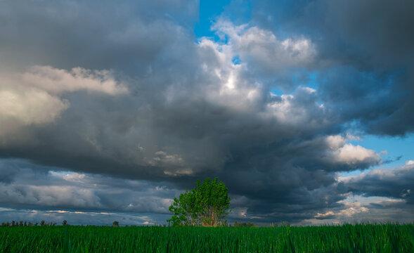 green grass at  storm clouds .