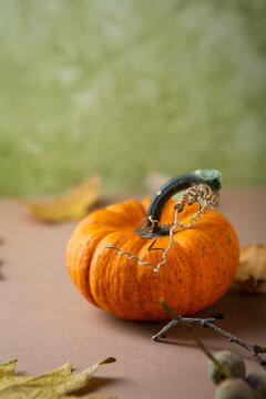 Close up of orange pumpkin Thaksgiving concept background