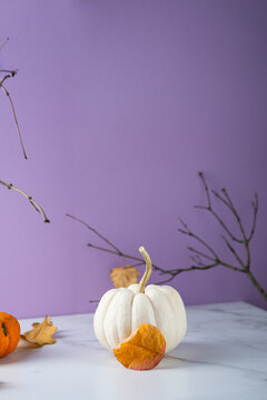 Modern autumn still life with pumpkin