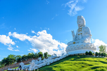 Fototapeta The large statue of Guan Yin at Huai Pla Kang Temple is Chinese style temple in Chiang Rai Province, Thailand. obraz