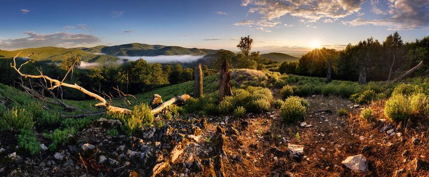 Green mountain landscape with sun  - panorama, Slovakia