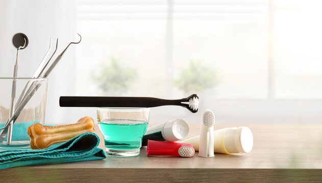 Products for cleaning canine teeth on wooden table window background