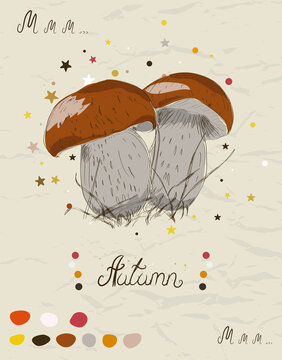 Vintage poster with mushroom from my autumn collection of posters and seamless textures. Vector illustration