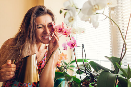 Happy woman touching orchids on window sill. Girl gardener taking care of home plants and flowers watering them.