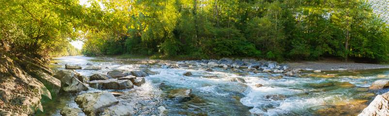 Fototapeta Panorama Grüner Wald im Sonnenlicht am Fluss obraz