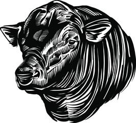 Fototapeta premium the vector illustration sketch of the bull head Angus