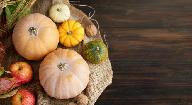 Top view of various pumpkins on wooden table