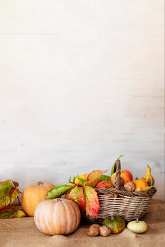 Pumpkins and basket of autumn fruits on wooden table against white wooden background