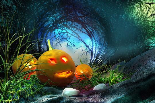 Halloween background. Halloween pumpkin in the forest.