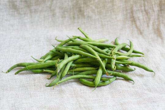 Grüne Bohnen - eigene Ernte aus dem Garten