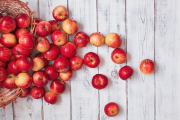 Fototapeta Rozsypane czerwone jabłka na starym drewnianym stole. Piękne, pyszne czerwony jabłka z sadu. obraz