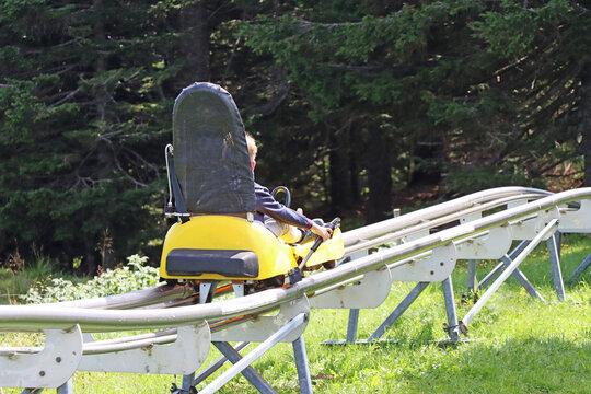 Little boy enjoying a summer fun roller alpine coaster ride
