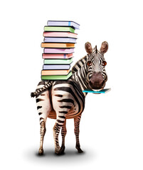 Fototapeta premium Zebra with books on the back and textbook concept
