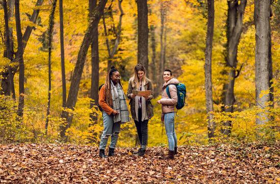 Three female friends enjoying hiking in forest.