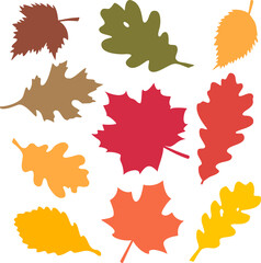 Fototapeta Fall Hand draw Svg, Fall Leaves Svg, Fall Leaf Bundle Svg, Autumn Svg, October Svg, Cricut Fall Leaves, Autumn Cut File, Leaves Hand Draw obraz
