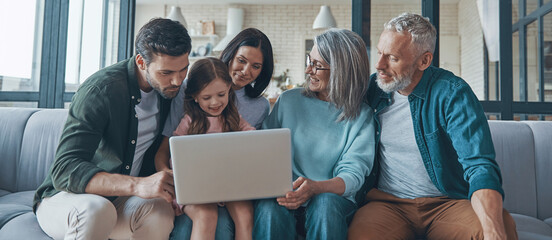Fototapeta Happy family using laptop and smiling while spending time home t obraz