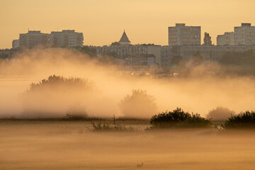 Fototapeta mgła nad Wartą obraz