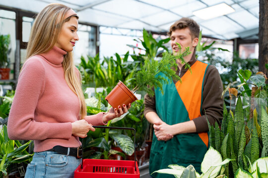 Young woman buying potted flowers in green garden , home decor plants.
