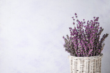 Fototapeta Wicker vase with beautiful lavender flowers on white background, closeup obraz