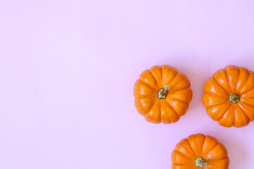 mini pumpkins, orange color, natural, halloween, white background or solid color, minimalist style