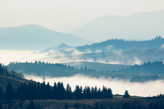 foggy travel scenery in mountains. wonderful autumn morning landscape with forests on hills