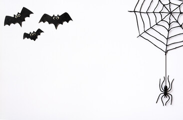 Fototapeta Halloween theme with spiders, web and bats on white background obraz