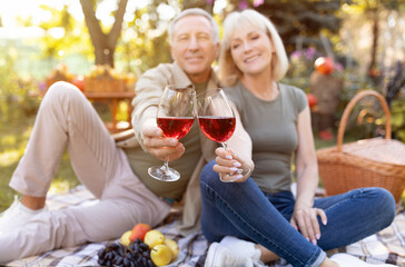 Obraz Cheers. Senior spouses clinking glasses with red wine, having picnic and sitting on blanket in garden, selective focus - fototapety do salonu
