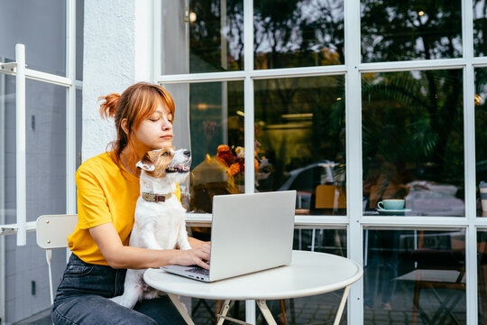 Lovely pet concept. Girl work with laptop, plays with a dog. Redhead woman hugging with dog at cozy cafe outdoor. Shelter a mongrel at home. Life style. College People Study Learning Reading Notes.