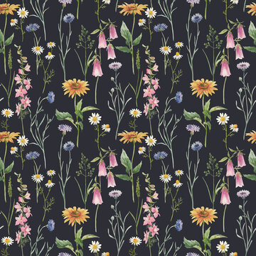 Beautiful vector seamless floral pattern with hand drawn watercolor gentle wild field flowers. Stock illuistration.