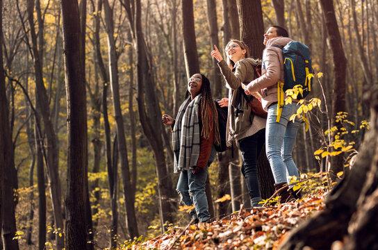 Three female friends having fun and enjoying hiking in forest.