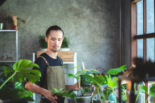 Portrait of young Asian man wearing apron growing plants and flowers in botany and as a hobby at home for nature and environment