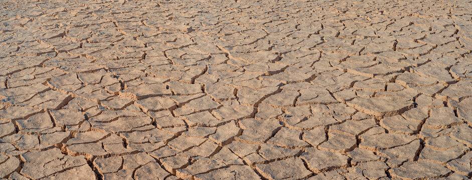 Cracked brown mud panorama, surface texture of barren land