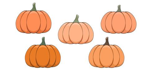 Fototapeta Pomarańczowe dynie na białym tle. Jesienne warzywa na Dzień Dziękczynienia, Halloween, symbol zbiorów. Ilustracja wektorowa. obraz