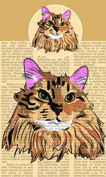 Newsprint Cat