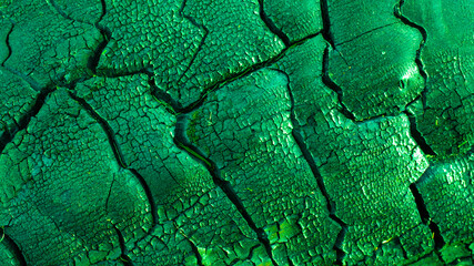 green background of charred wood macro photo