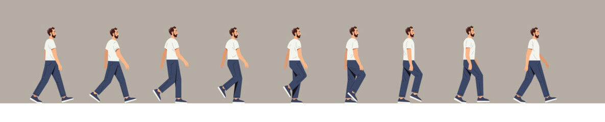 Obraz Set of human walk. Man walks, many frames, images for creating animation. Pictures repeating in a circle, constant movement, proplr. Cartoon flat vector illustration isolated on white background - fototapety do salonu