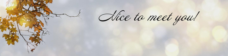 Greeting phrase nice to meet you