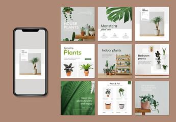 Obraz Social Media Post Layout for Florist Shop - fototapety do salonu