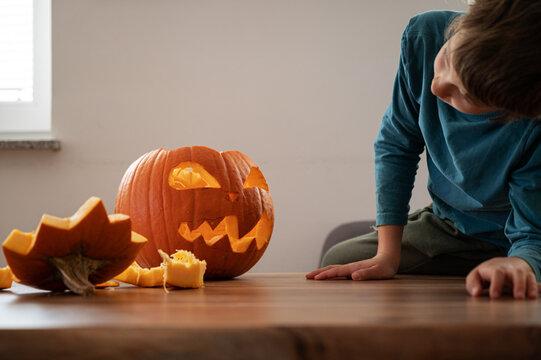 Boy looking at halloween pumpkin