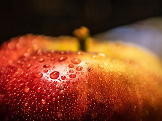 Fototapeta Krople na jabłku.  obraz