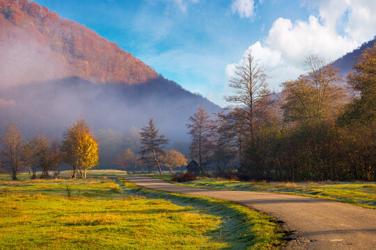 countryside road through rural valley. beautiful mountain landscape on a foggy morning. tree on the grassy pasture. colorful nature scenery with bright sky