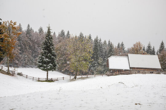 farmhouse in forest at snowfall