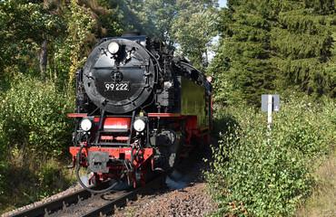 Fototapeta Harzer Schmalspurbahn  obraz