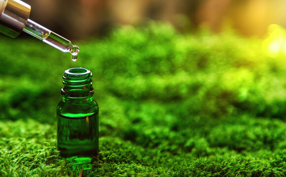 Cosmetics in a bottle and essential oils on moss. Natural spa. Selective focus.