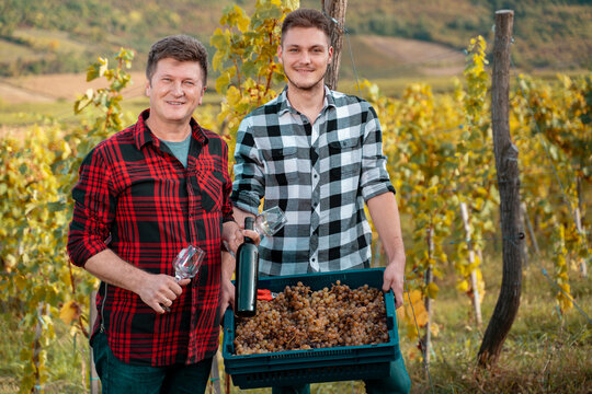 Father  and son in their family vineyard, small business holding bottle and crate full of ripe grapse, smiling.