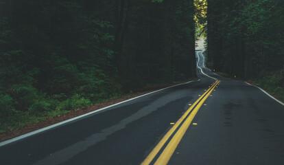 Obraz California Coastal 101 Redwood Highway - fototapety do salonu