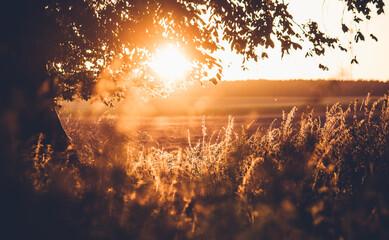 Fototapeta Piękny zachód słońca jesienią obraz